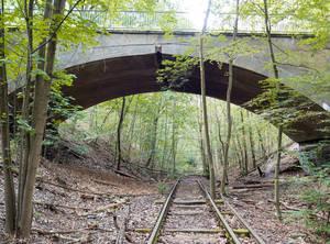 Die Brücke im Wald und die Gleise sind Überbleibsel der Friedhofsbahn.