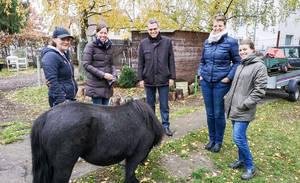 """Werden beim Ponyclub """"Zu den flotten Hufen"""" bald die Umzugskartons gepackt? Foto: Stadtentwicklungsamt Tempelhof-Schöneberg"""