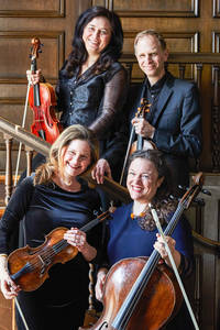 o. Dr.Johannes Gebauer (Violine1) und Irina Alexandrowna (Viola), l.u. Mareike Beckmann (Violine2) und r.u. Kathrin Sutor (Violoncello). Foto: Silke Woweries