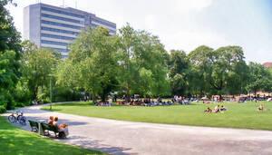 Preußenpark in Wilmersdorf. Foto: Bezirksamt