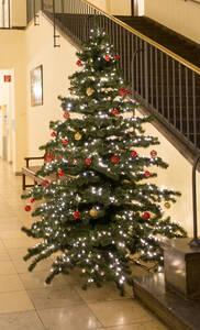 Der Weihnachtsbaum vom letzten Jahr im Foyer vom Rathaus Zehlendorf.