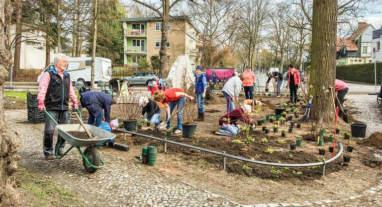 Anwohnerinnen und Anwohner bei der Pflanzaktion auf dem Paulinenplatz. Foto: Elisabeth Schroeren