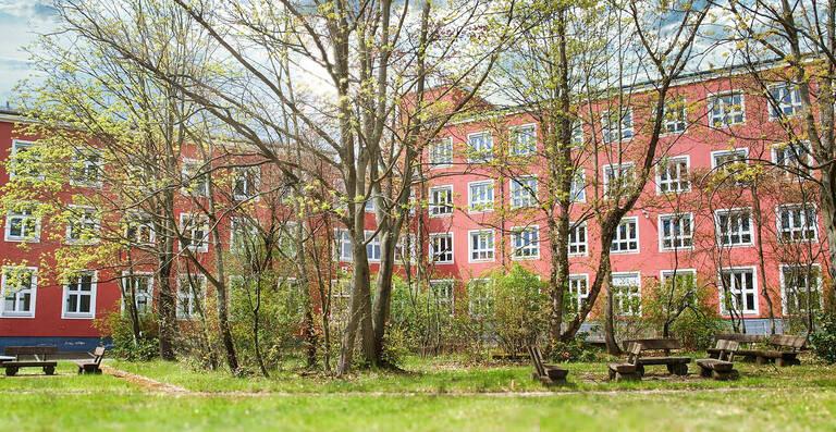 Zwischen den leerstehenden Bürokomplexen Lichterfelder Straße12-17 ist noch viel Raum für Grün und Wildtiere.