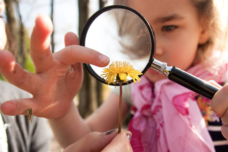 Natur mit Kinderaugen betrachten. Foto: Stiftung Naturschutz Berlin