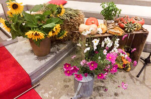 Am 3. Oktober wird das Erntedankfest gefeiert. Foto: Viola Türk, Dietrich-Bonhoeffer-Gemeinde