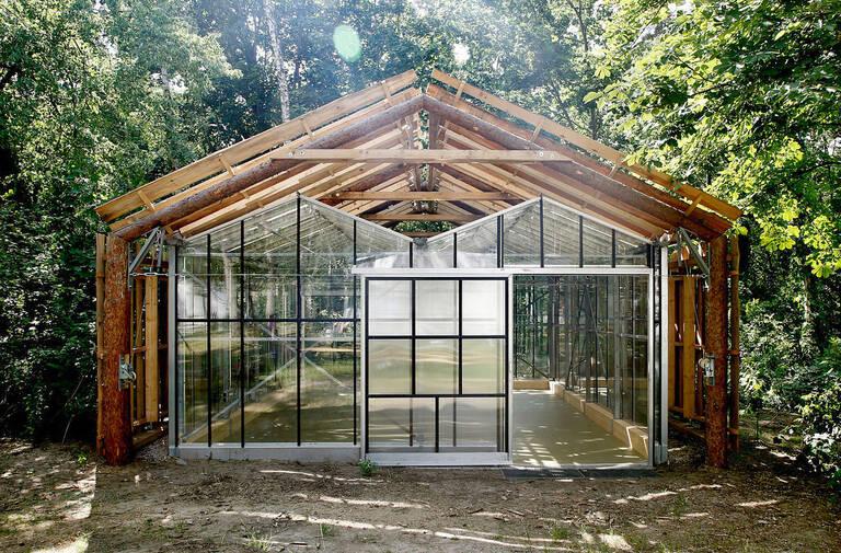 Waldraum, im Garten des Brücke-Museums, 2021. Foto: Constanze Flamme, Brücke-Museum