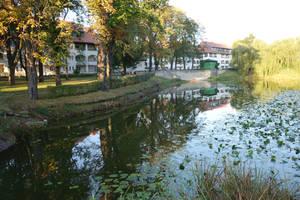 Der Teich verleiht der Siedlung einen besonders idyllischen Charakter.