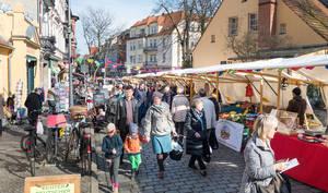 Wochenmarkt am Teltower Damm in Zehlendorf Mitte.