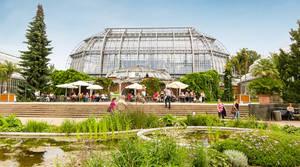 Feiern im Schatten des Großen Tropenhauses. Der Botanische Garten lädt im Sommer zu mehreren Festen ein.