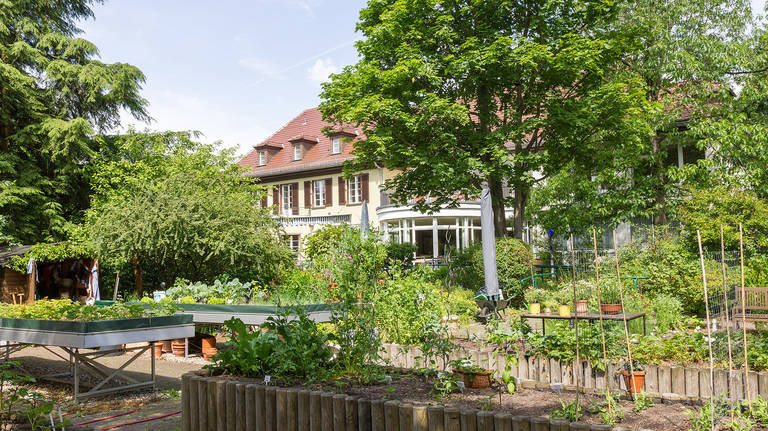 Der barrierefreie Garten der Villa Donnersmarck in Zehlendorf nimmt Teil an der Initiative der Offenen Gärten.