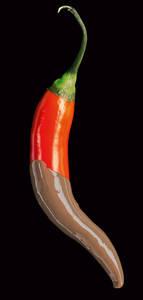 Chili & Schokolade. Foto: Christine Hillmann-Huber, BGBM