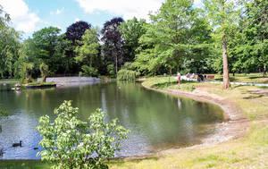 Renaturiert und saniert: Der Teich im Gemeindepark.