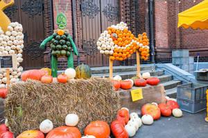 Auf dem Kürbisfest sind Kürbisse in vielen Farben und Formen zu sehen – auch als fantasievolle Figuren.