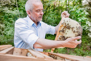 Thomas Radetzki bei seinen Bienen. Foto: Tobias Gerber