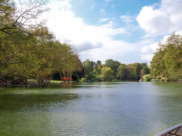 Der Waldsee – Regenrückhaltebecken und schützenswerte Naturoase zugleich.