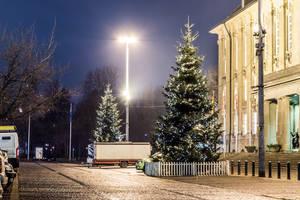 Weihnachtsbäume vor dem Rathaus Schöneberg.