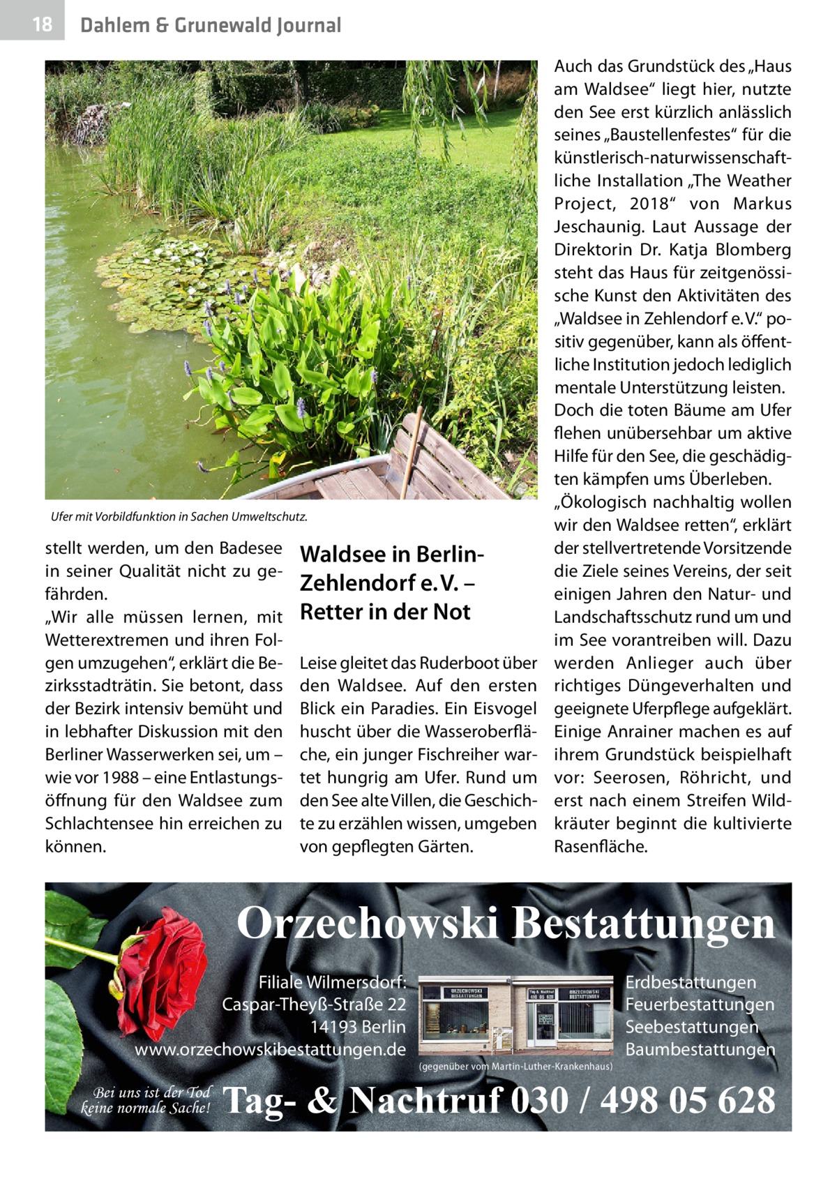 """18  Dahlem & Grunewald Journal  Ufer mit Vorbildfunktion in Sachen Umweltschutz.  stellt werden, um den Badesee in seiner Qualität nicht zu gefährden. """"Wir alle müssen lernen, mit Wetterextremen und ihren Folgen umzugehen"""", erklärt die Bezirksstadträtin. Sie betont, dass der Bezirk intensiv bemüht und in lebhafter Diskussion mit den Berliner Wasserwerken sei, um – wie vor 1988 – eine Entlastungsöffnung für den Waldsee zum Schlachtensee hin erreichen zu können.  Waldsee in BerlinZehlendorfe.V. – Retter in der Not Leise gleitet das Ruderboot über den Waldsee. Auf den ersten Blick ein Paradies. Ein Eisvogel huscht über die Wasseroberfläche, ein junger Fischreiher wartet hungrig am Ufer. Rund um den See alte Villen, die Geschichte zu erzählen wissen, umgeben von gepflegten Gärten.  Auch das Grundstück des """"Haus am Waldsee"""" liegt hier, nutzte den See erst kürzlich anlässlich seines """"Baustellenfestes"""" für die künstlerisch-naturwissenschaftliche Installation """"The Weather Project, 2018"""" von Markus Jeschaunig. Laut Aussage der Direktorin Dr. Katja Blomberg steht das Haus für zeitgenössische Kunst den Aktivitäten des """"Waldsee in Zehlendorf e.V."""" positiv gegenüber, kann als öffentliche Institution jedoch lediglich mentale Unterstützung leisten. Doch die toten Bäume am Ufer flehen unübersehbar um aktive Hilfe für den See, die geschädigten kämpfen ums Überleben. """"Ökologisch nachhaltig wollen wir den Waldsee retten"""", erklärt der stellvertretende Vorsitzende die Ziele seines Vereins, der seit einigen Jahren den Natur- und Landschaftsschutz rund um und im See vorantreiben will. Dazu werden Anlieger auch über richtiges Düngeverhalten und geeignete Uferpflege aufgeklärt. Einige Anrainer machen es auf ihrem Grundstück beispielhaft vor: Seerosen, Röhricht, und erst nach einem Streifen Wildkräuter beginnt die kultivierte Rasenfläche.  Orzechowski Bestattungen Filiale Wilmersdorf: Caspar-Theyß-Straße 22 14193 Berlin www.orzechowskibestattungen.de Bei uns ist der Tod keine normale Sache! """