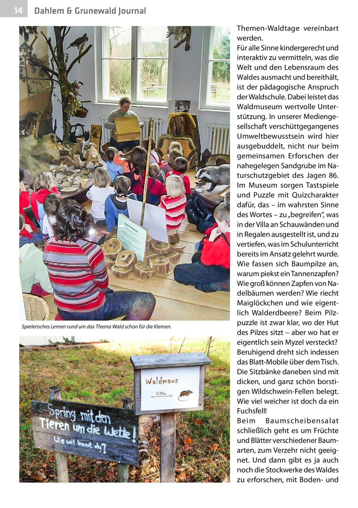 """14  Dahlem & Grunewald Journal  Spielerisches Lernen rund um das Thema Wald schon für die Kleinen.  Themen-Waldtage vereinbart werden. Für alle Sinne kindergerecht und interaktiv zu vermitteln, was die Welt und den Lebensraum des Waldes ausmacht und bereithält, ist der pädagogische Anspruch der Waldschule. Dabei leistet das Waldmuseum wertvolle Unterstützung. In unserer Mediengesellschaft verschüttgegangenes Umweltbewusstsein wird hier ausgebuddelt, nicht nur beim gemeinsamen Erforschen der nahegelegen Sandgrube im Naturschutzgebiet des Jagen 86. Im Museum sorgen Tastspiele und Puzzle mit Quizcharakter dafür, das – im wahrsten Sinne des Wortes – zu """"begreifen"""", was in der Villa an Schauwänden und in Regalen ausgestellt ist, und zu vertiefen, was im Schulunterricht bereits im Ansatz gelehrt wurde. Wie fassen sich Baumpilze an, warum piekst ein Tannenzapfen? Wie groß können Zapfen von Nadelbäumen werden? Wie riecht Maiglöckchen und wie eigentlich Walderdbeere? Beim Pilzpuzzle ist zwar klar, wo der Hut des Pilzes sitzt – aber wo hat er eigentlich sein Myzel versteckt? Beruhigend dreht sich indessen das Blatt-Mobile über dem Tisch. Die Sitzbänke daneben sind mit dicken, und ganz schön borstigen Wildschwein-Fellen belegt. Wie viel weicher ist doch da ein Fuchsfell! Beim Baumscheibensalat schließlich geht es um Früchte und Blätter verschiedener Baum arten, zum Verzehr nicht geeignet. Und dann gibt es ja auch noch die Stockwerke des Waldes zu erforschen, mit Boden- und"""
