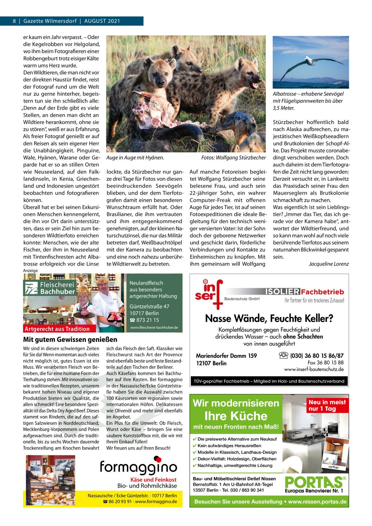 """8 Gazette Wilmersdorf AuGust 2021 er kaum ein Jahr verpasst. – Oder die Kegelrobben vor Helgoland, wo ihm beim Fotografieren einer Robbengeburt trotz eisiger Kälte warm ums Herz wurde. Den Wildtieren, die man nicht vor der direkten Haustür findet, reist der Fotograf rund um die Welt nur zu gerne hinterher, begeistern tun sie ihn schließlich alle: """"Denn auf der Erde gibt es viele stellen, an denen man dicht an Wildtiere herankommt, ohne sie zu stören"""", weiß er aus Erfahrung. Als freier Fotograf genießt er auf den Reisen als sein eigener Herr die unabhängigkeit. Pinguine, Wale, Hyänen, Warane oder Geparde hat er so an stillen Orten wie Neuseeland, auf den Falklandinseln, in Kenia, Griechenland und Indonesien ungestört beobachten und fotografieren können. Überall hat er bei seinen Exkursionen Menschen kennengelernt, die ihn vor Ort darin unterstützten, dass er sein Ziel hin zum besonderen Wildtierfoto erreichen konnte: Menschen, wie der alte Fischer, der ihm in Neuseeland mit tintenfischresten acht Albatrosse erfolgreich vor die Linse  Albatrosse – erhabene Seevögel mit Flügelspannweiten bis über 3,5Meter.  Auge in Auge mit Hyänen. lockte, da stürzbecher nur ganze drei tage für Fotos von diesen beeindruckenden seevögeln blieben, und der dem tierfotografen damit einen besonderen Wunschtraum erfüllt hat. Oder Brasilianer, die ihm vertrauten und ihm entgegenkommend genehmigten, auf der kleinen Naturschutzinsel, die nur das Militär betreten darf, Weißbauchtölpel mit der Kamera zu beobachten und eine noch nahezu unberührte Wildtierwelt zu betreten.  Fotos: Wolfgang Stürzbecher Auf manche Fotoreisen begleitet Wolfgang stürzbecher seine belesene Frau, und auch sein 22-jähriger sohn, ein wahrer Computer-Freak mit offenen Auge für jedes tier, ist auf seinen Fotoexpeditionen die ideale Begleitung für den technisch weniger versierten Vater: Ist der sohn doch der geborene Netzwerker und geschickt darin, förderliche Verbindungen und Kontakte zu Einheimischen zu knüpfen. Mit ihm gem"""