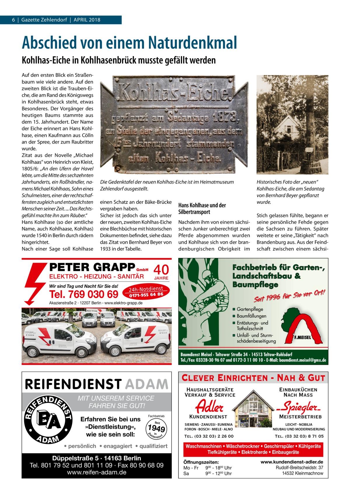 """6 Gazette Zehlendorf April 2018  Abschied von einem Naturdenkmal Kohlhas-Eiche in Kohlhasenbrück musste gefällt werden Auf den ersten Blick ein Straßenbaum wie viele andere. Auf den zweiten Blick ist die Trauben-Eiche, die am Rand des Königswegs in Kohlhasenbrück steht, etwas Besonderes. Der Vorgänger des heutigen Baums stammte aus dem 15.Jahrhundert. Der Name der Eiche erinnert an Hans Kohlhase, einen Kaufmann aus Cölln an der Spree, der zum Raubritter wurde. Zitat aus der Novelle """"Michael Kohlhaas"""" von Heinrich von Kleist, 1805/6: """"An den Ufern der Havel lebte, um die Mitte des sechzehnten Jahrhunderts, ein Roßhändler, namens Michael Kohlhaas, Sohn eines Schulmeisters, einer der rechtschaffensten zugleich und entsetzlichsten Menschen seiner Zeit. ... Das Rechtsgefühl machte ihn zum Räuber."""" Hans Kohlhase (so der amtliche Name, auch Kohlhaase, Kohlhas) wurde 1540 in Berlin durch rädern hingerichtet. Nach einer Sage soll Kohlhase  Die Gedenktafel der neuen Kohlhas-Eiche ist im Heimatmuseum Zehlendorf ausgestellt. einen Schatz an der Bäke-Brücke vergraben haben. Sicher ist jedoch das sich unter der neuen, zweiten Kohlhas-Eiche eine Blechbüchse mit historischen Dokumenten befindet, siehe dazu das Zitat von Bernhard Beyer von 1933 in der Tabelle.  PETER GRAPP Tel. 769 030 69  Nachdem ihm von einem sächsischen Junker unberechtigt zwei Pferde abgenommen wurden und Kohlhase sich von der brandenburgischen Obrigkeit im  40  GmbH  ELEKTRO - HEIZUNG - SANITÄR Wir sind Tag und Nacht für Sie da!  Hans Kohlhase und der Silbertransport  Historisches Foto der """"neuen"""" Kohlhas-Eiche, die am Sedantag von Bernhard Beyer gepflanzt wurde. Stich gelassen fühlte, begann er seine persönliche Fehde gegen die Sachsen zu führen. Später weitete er seine """"Tätigkeit"""" nach Brandenburg aus. Aus der Feindschaft zwischen einem sächsi Fachbetrieb für Garten-, Landschaftsbau & Baumpflege  JAHRE  24 h-N ot die ns t  Sie vor Ort! r fü 6 9 19 t ei S  01 71- 95 5 64 86  Akazienstraße 2 · 12207 Berlin · ww"""