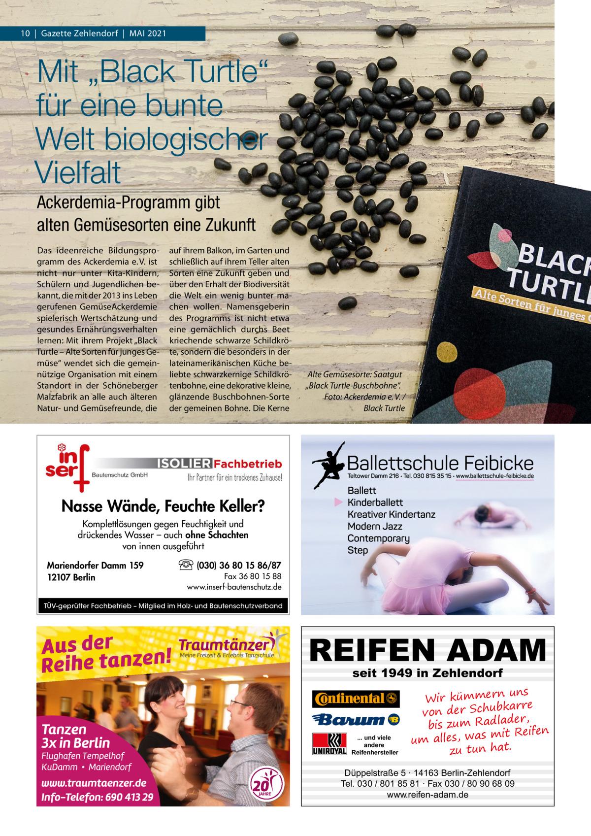 """10 Gazette Zehlendorf MAI 2021  Mit """"Black Turtle"""" für eine bunte Welt biologischer Vielfalt Ackerdemia-Programm gibt alten Gemüsesorten eine Zukunft Das ideenreiche Bildungsprogramm des Ackerdemia e. V. ist nicht nur unter Kita-Kindern, Schülern und Jugendlichen bekannt, die mit der 2013 ins Leben gerufenen GemüseAckerdemie spielerisch Wertschätzung und gesundes Ernährungsverhalten lernen: Mit ihrem Projekt """"Black Turtle – Alte Sorten für junges Gemüse"""" wendet sich die gemeinnützige Organisation mit einem Standort in der Schöneberger Malzfabrik an alle auch älteren Natur- und Gemüsefreunde, die  auf ihrem Balkon, im Garten und schließlich auf ihrem Teller alten Sorten eine Zukunft geben und über den Erhalt der Biodiversität die Welt ein wenig bunter machen wollen. Namensgeberin des Programms ist nicht etwa eine gemächlich durchs Beet kriechende schwarze Schildkröte, sondern die besonders in der lateinamerikanischen Küche beliebte schwarzkernige Schildkrötenbohne, eine dekorative kleine, glänzende Buschbohnen-Sorte der gemeinen Bohne. Die Kerne  Alte Gemüsesorte: Saatgut """"Black Turtle-Buschbohne"""". Foto: Ackerdemia e. V. / Black Turtle  Nasse Wände, Feuchte Keller? Komplettlösungen gegen Feuchtigkeit und drückendes Wasser – auch ohne Schachten von innen ausgeführt Mariendorfer Damm 159 12107 Berlin  (030) 36 80 15 86/87 Fax 36 80 15 88 www.inserf-bautenschutz.de  TÜV-geprüfter Fachbetrieb – Mitglied im Holz- und Bautenschutzverband  REIFEN ADAM seit 1949 in Zehlendorf  ... und viele andere Reifenhersteller  uns Wir kümmern re ar bk von der Schu er d , bis zum Radla mit Reifen um alles, was zu tun hat.  Düppelstraße 5 · 14163 Berlin-Zehlendorf Tel. 030 / 801 85 81 · Fax 030 / 80 90 68 09 www.reifen-adam.de"""