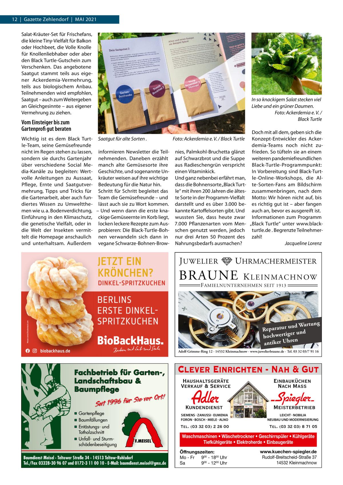 """12 Gazette Zehlendorf MAI 2021 Salat-Kräuter-Set für Frischefans, die kleine Tiny-Vielfalt für Balkon oder Hochbeet, die Volle Knolle für Knollenliebhaber oder aber den Black Turtle-Gutschein zum Verschenken. Das angebotene Saatgut stammt teils aus eigener Ackerdemia-Vermehrung, teils aus biologischem Anbau. Teilnehmenden wird empfohlen, Saatgut – auch zum Weitergeben an Gleichgesinnte – aus eigener Vermehrung zu ziehen.  In so knackigem Salat stecken viel Liebe und ein grüner Daumen. Foto: Ackerdemia e. V. / Black Turtle  Vom Einsteiger bis zum Gartenprofi gut beraten  Doch mit all dem, geben sich die Wichtig ist es dem Black Turt- Saatgut für alte Sorten . Foto: Ackerdemia e. V. / Black Turtle Konzept-Entwickler des Ackerle-Team, seine Gemüsefreunde demia-Teams noch nicht zunicht im Regen stehen zu lassen, informieren Newsletter die Teil- nies, Palmkohl-Bruchetta glänzt frieden. So tüfteln sie an einem sondern sie durchs Gartenjahr nehmenden. Daneben erzählt auf Schwarzbrot und die Suppe weiteren pandemiefreundlichen über verschiedene Social Me- manch alte Gemüsesorte ihre aus Radieschengrün verspricht Black-Turtle-Programmpunkt: In Vorbereitung sind Black-Turtdia-Kanäle zu begleiten: Wert- Geschichte, und sogenannte Un- einen Vitaminkick. volle Anleitungen zu Aussaat, kräuter weisen auf ihre wichtige Und ganz nebenbei erfährt man, le-Online-Workshops, die Aldass die Bohnensorte """"Black Turt- te-Sorten-Fans am Bildschirm Pflege, Ernte und Saatgutver- Bedeutung für die Natur hin. mehrung, Tipps und Tricks für Schritt für Schritt begleitet das le"""" mit ihren 200Jahren die ältes- zusammenbringen, nach dem die Gartenarbeit, aber auch fun- Team die Gemüsefreunde – und te Sorte in der Programm-Vielfalt Motto: Wir hören nicht auf, bis diertes Wissen zu Umweltthe- lässt auch sie zu Wort kommen. darstellt und es über 3.000 be- es richtig gut ist – aber fangen men wie u. a. Bodenverdichtung, – Und wenn dann die erste kna- kannte Kartoffelsorten gibt. Und auch an, bevor es aus"""