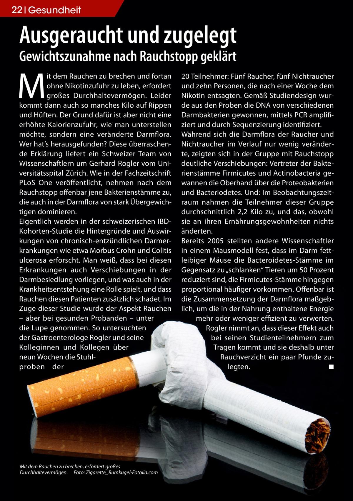 22 Gesundheit  Ausgeraucht und zugelegt Gewichtszunahme nach Rauchstopp geklärt  M  it dem Rauchen zu brechen und fortan ohne Nikotinzufuhr zu leben, erfordert großes Durchhaltevermögen. Leider kommt dann auch so manches Kilo auf Rippen und Hüften. Der Grund dafür ist aber nicht eine erhöhte Kalorienzufuhr, wie man unterstellen möchte, sondern eine veränderte Darmflora. Wer hat's herausgefunden? Diese überraschende Erklärung liefert ein Schweizer Team von Wissenschaftlern um Gerhard Rogler vom Universitätsspital Zürich. Wie in der Fachzeitschrift PLoS One veröffentlicht, nehmen nach dem Rauchstopp offenbar jene Bakterienstämme zu, die auch in der Darmflora von stark Übergewichtigen dominieren. Eigentlich werden in der schweizerischen IBDKohorten-Studie die Hintergründe und Auswirkungen von chronisch-entzündlichen Darmerkrankungen wie etwa Morbus Crohn und Colitis ulcerosa erforscht. Man weiß, dass bei diesen Erkrankungen auch Verschiebungen in der Darmbesiedlung vorliegen, und was auch in der Krankheitsentstehung eine Rolle spielt, und dass Rauchen diesen Patienten zusätzlich schadet. Im Zuge dieser Studie wurde der Aspekt Rauchen – aber bei gesunden Probanden – unter die Lupe genommen. So untersuchten der Gastroenterologe Rogler und seine Kolleginnen und Kollegen über neun Wochen die Stuhlproben der  Mit dem Rauchen zu brechen, erfordert großes Durchhaltevermögen.� Foto: Zigarette_Rumkugel-Fotolia.com  20Teilnehmer: Fünf Raucher, fünf Nichtraucher und zehn Personen, die nach einer Woche dem Nikotin entsagten. Gemäß Studiendesign wurde aus den Proben die DNA von verschiedenen Darmbakterien gewonnen, mittels PCR amplifiziert und durch Sequenzierung identifiziert. Während sich die Darmflora der Raucher und Nichtraucher im Verlauf nur wenig veränderte, zeigten sich in der Gruppe mit Rauchstopp deutliche Verschiebungen: Vertreter der Bakterienstämme Firmicutes und Actinobacteria gewannen die Oberhand über die Proteobakterien und Bacteriodetes. Und: Im Beobachtungszeitra