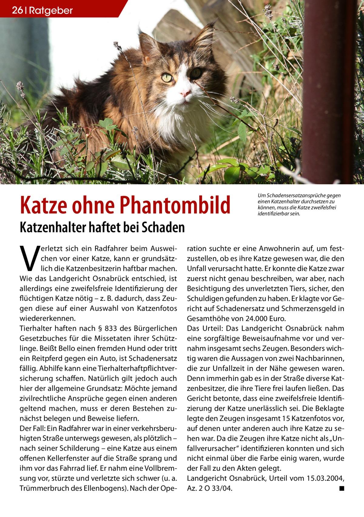 26 Ratgeber  Katze ohne Phantombild  Um Schadensersatzansprüche gegen einen Katzenhalter durchsetzen zu können, muss die Katze zweifelsfrei identifizierbar sein.  Katzenhalter haftet bei Schaden  V  erletzt sich ein Radfahrer beim Ausweichen vor einer Katze, kann er grundsätzlich die Katzenbesitzerin haftbar machen. Wie das Landgericht Osnabrück entschied, ist allerdings eine zweifelsfreie Identifizierung der flüchtigen Katze nötig – z. B. dadurch, dass Zeugen diese auf einer Auswahl von Katzenfotos wiedererkennen. Tierhalter haften nach § 833 des Bürgerlichen Gesetzbuches für die Missetaten ihrer Schützlinge. Beißt Bello einen fremden Hund oder tritt ein Reitpferd gegen ein Auto, ist Schadenersatz fällig. Abhilfe kann eine Tierhalterhaftpflichtversicherung schaffen. Natürlich gilt jedoch auch hier der allgemeine Grundsatz: Möchte jemand zivilrechtliche Ansprüche gegen einen anderen geltend machen, muss er deren Bestehen zunächst belegen und Beweise liefern. Der Fall: Ein Radfahrer war in einer verkehrsberuhigten Straße unterwegs gewesen, als plötzlich – nach seiner Schilderung – eine Katze aus einem offenen Kellerfenster auf die Straße sprang und ihm vor das Fahrrad lief. Er nahm eine Vollbremsung vor, stürzte und verletzte sich schwer (u. a. Trümmerbruch des Ellenbogens). Nach der Ope ration suchte er eine Anwohnerin auf, um festzustellen, ob es ihre Katze gewesen war, die den Unfall verursacht hatte. Er konnte die Katze zwar zuerst nicht genau beschreiben, war aber, nach Besichtigung des unverletzten Tiers, sicher, den Schuldigen gefunden zu haben. Er klagte vor Gericht auf Schadenersatz und Schmerzensgeld in Gesamthöhe von 24.000 Euro. Das Urteil: Das Landgericht Osnabrück nahm eine sorgfältige Beweisaufnahme vor und vernahm insgesamt sechs Zeugen. Besonders wichtig waren die Aussagen von zwei Nachbarinnen, die zur Unfallzeit in der Nähe gewesen waren. Denn immerhin gab es in der Straße diverse Katzenbesitzer, die ihre Tiere frei laufen ließen. Das Gericht beton