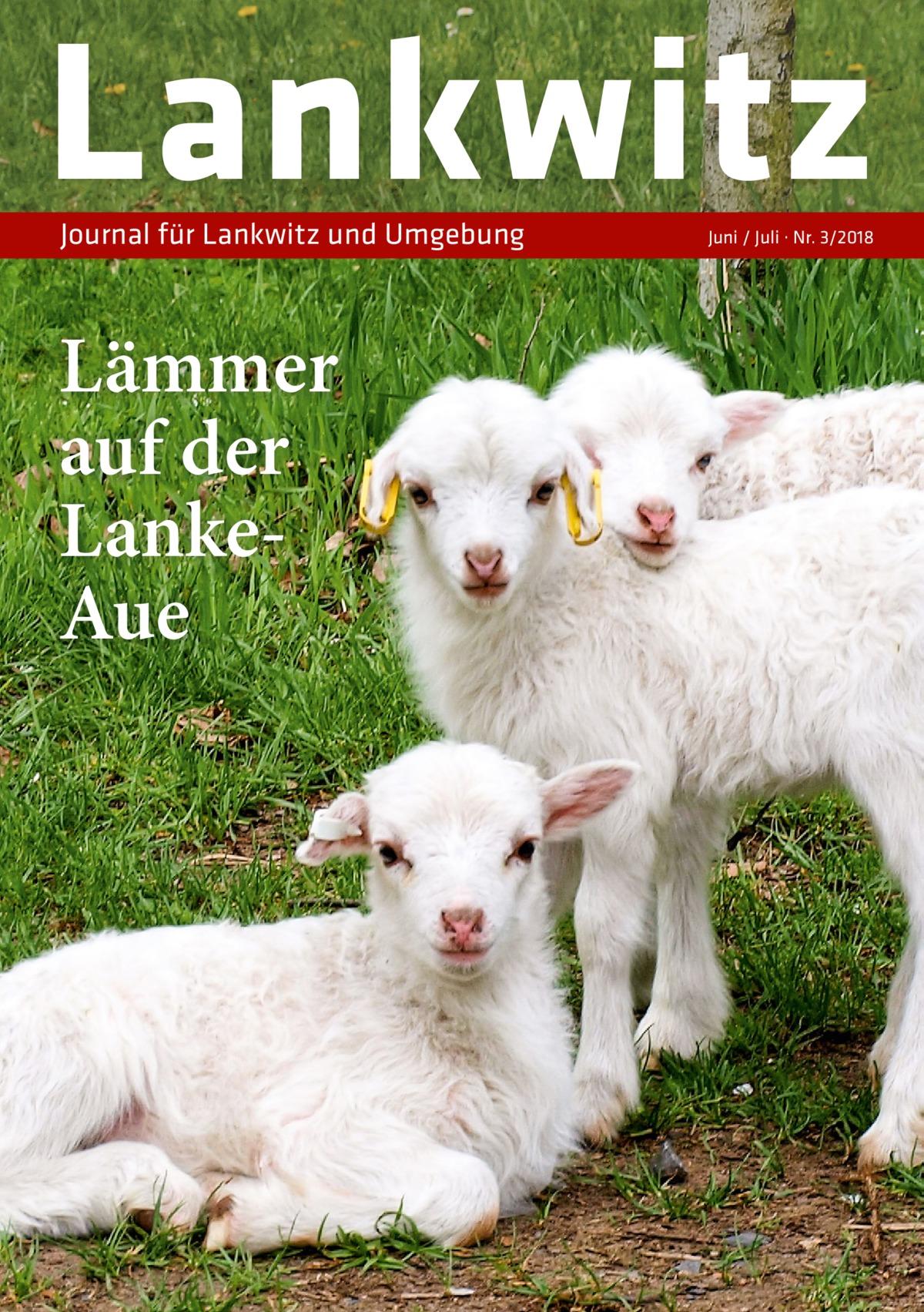 Lankwitz Journal für Lankwitz und Umgebung  Lämmer auf der LankeAue  Juni / Juli · Nr. 3/2018
