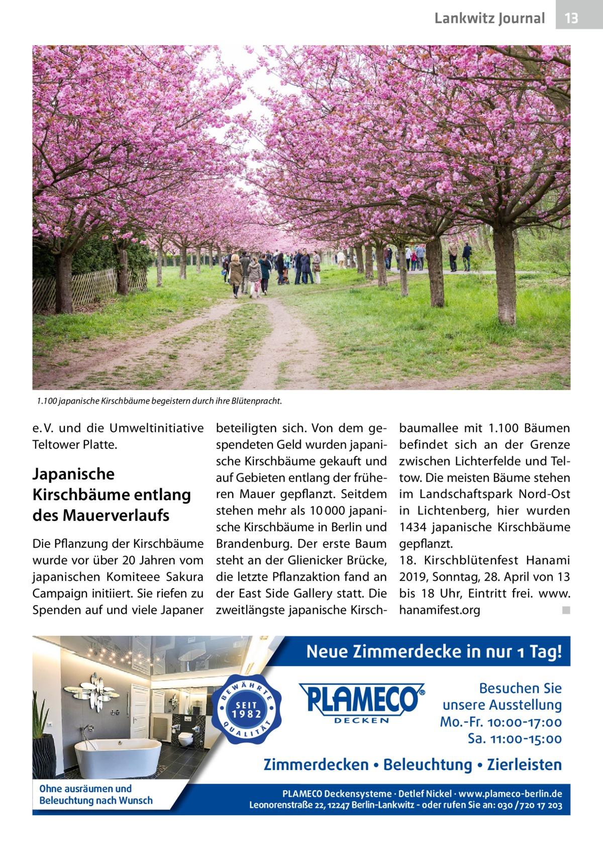 Lankwitz Journal  13  1.100 japanische Kirschbäume begeistern durch ihre Blütenpracht.  e.V. und die Umweltinitiative beteiligten sich. Von dem geTeltower Platte. spendeten Geld wurden japanische Kirschbäume gekauft und Japanische auf Gebieten entlang der früheKirschbäume entlang ren Mauer gepflanzt. Seitdem stehen mehr als 10000japanides Mauerverlaufs sche Kirschbäume in Berlin und Die Pflanzung der Kirschbäume Brandenburg. Der erste Baum wurde vor über 20Jahren vom steht an der Glienicker Brücke, japanischen Komiteee Sakura die letzte Pflanzaktion fand an Campaign initiiert. Sie riefen zu der East Side Gallery statt. Die Spenden auf und viele Japaner zweitlängste japanische Kirsch baumallee mit 1.100 Bäumen befindet sich an der Grenze zwischen Lichterfelde und Teltow. Die meisten Bäume stehen im Landschaftspark Nord-Ost in Lichtenberg, hier wurden 1434 japanische Kirschbäume gepflanzt. 18. Kirschblütenfest Hanami 2019, Sonntag, 28.April von 13 bis 18 Uhr, Eintritt frei. www. hanamifest.org � ◾  Neue Zimmerdecke in nur 1 Tag! Besuchen Sie unsere Ausstellung Mo.-Fr. 10:00-17:00 Sa. 11:00-15:00  Zimmerdecken • Beleuchtung • Zierleisten Ohne ausräumen und Beleuchtung nach Wunsch  PLAMECO Deckensysteme ∙ Detlef Nickel ∙ www.plameco-berlin.de Leonorenstraße 22, 12247 Berlin-Lankwitz - oder rufen Sie an: 030 /720 17 203