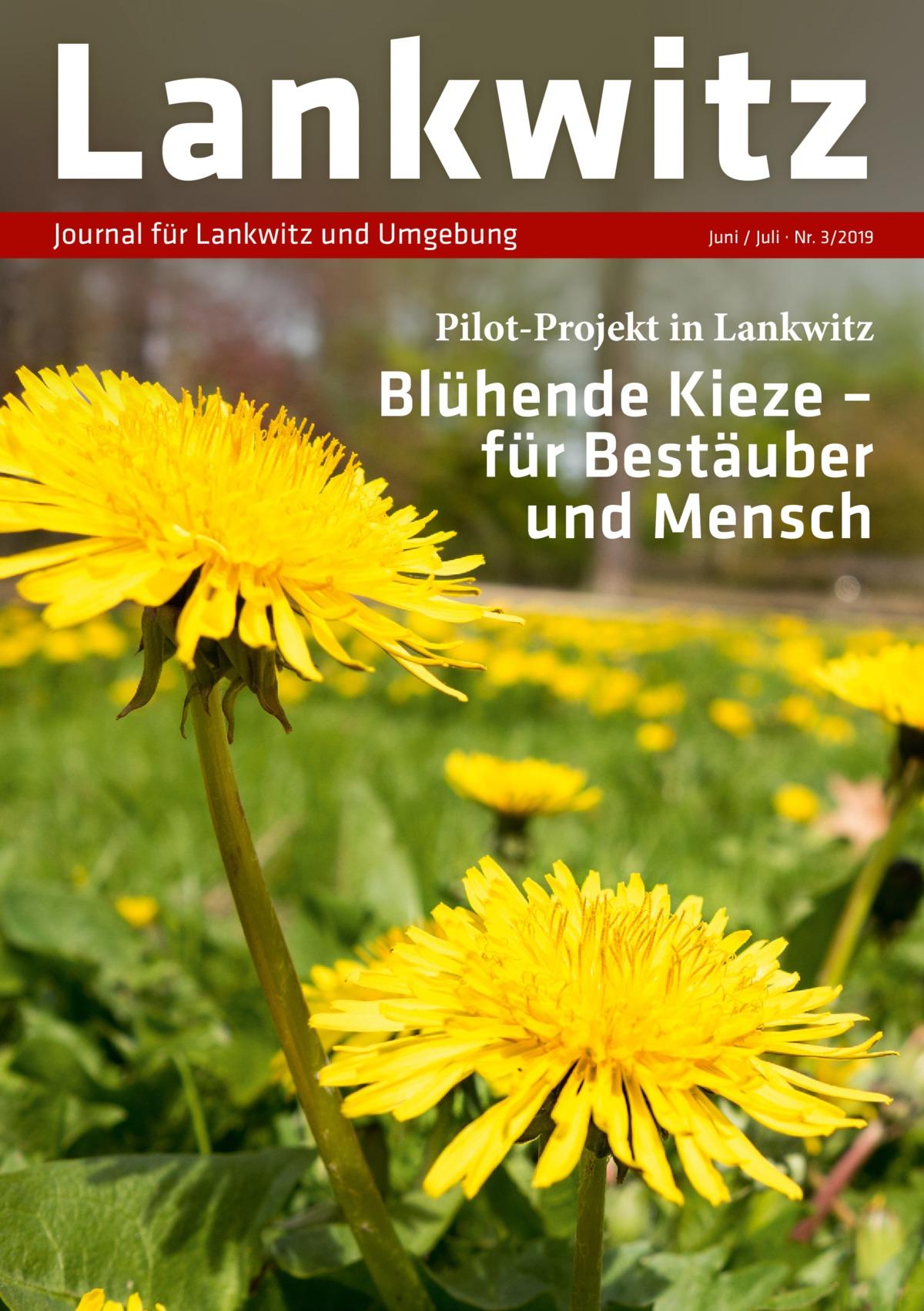Lankwitz Journal für Lankwitz und Umgebung  Juni / Juli · Nr. 3/2019  Pilot-Projekt in Lankwitz  Blühende Kieze – für Bestäuber und Mensch
