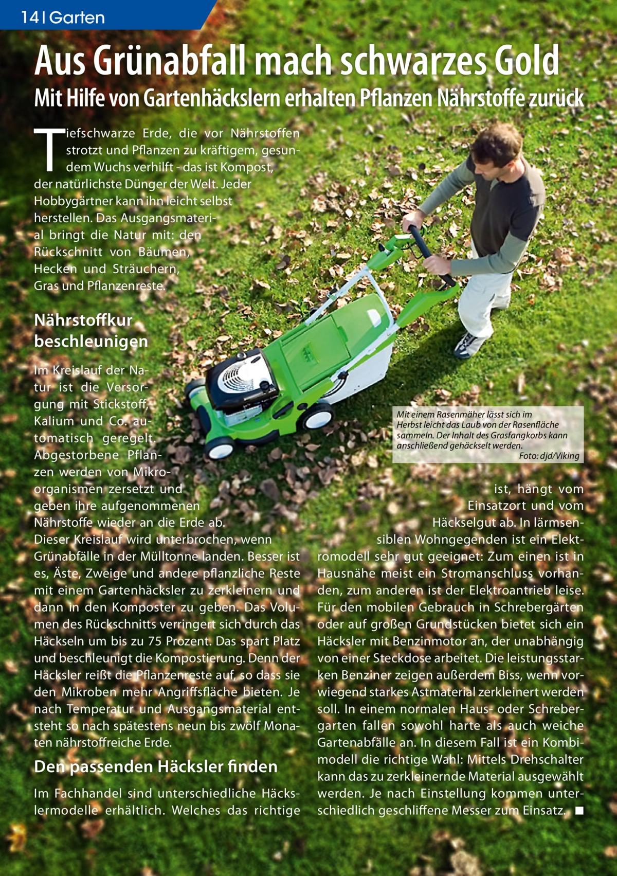 14 Ratgeber Garten  Aus Grünabfall mach schwarzes Gold  Mit Hilfe von Gartenhäckslern erhalten Pflanzen Nährstoffe zurück  T  iefschwarze Erde, die vor Nährstoffen strotzt und Pflanzen zu kräftigem, gesundem Wuchs verhilft - das ist Kompost, der natürlichste Dünger der Welt. Jeder Hobbygärtner kann ihn leicht selbst herstellen. Das Ausgangsmaterial bringt die Natur mit: den Rückschnitt von Bäumen, Hecken und Sträuchern, Gras und Pflanzenreste.  Nährstoffkur beschleunigen Im Kreislauf der Natur ist die Versorgung mit Stickstoff, Kalium und Co. automatisch geregelt. Abgestorbene Pflanzen werden von Mikroorganismen zersetzt und geben ihre aufgenommenen Nährstoffe wieder an die Erde ab. Dieser Kreislauf wird unterbrochen, wenn Grünabfälle in der Mülltonne landen. Besser ist es, Äste, Zweige und andere pflanzliche Reste mit einem Gartenhäcksler zu zerkleinern und dann in den Komposter zu geben. Das Volumen des Rückschnitts verringert sich durch das Häckseln um bis zu 75 Prozent. Das spart Platz und beschleunigt die Kompostierung. Denn der Häcksler reißt die Pflanzenreste auf, so dass sie den Mikroben mehr Angriffsfläche bieten. Je nach Temperatur und Ausgangsmaterial entsteht so nach spätestens neun bis zwölf Monaten nährstoffreiche Erde.  Den passenden häcksler finden Im Fachhandel sind unterschiedliche Häckslermodelle erhältlich. Welches das richtige  Mit einem Rasenmäher lässt sich im Herbst leicht das Laub von der Rasenfläche sammeln. Der Inhalt des Grasfangkorbs kann anschließend gehäckselt werden. Foto: djd/Viking  ist, hängt vom Einsatzort und vom Häckselgut ab. In lärmsensiblen Wohngegenden ist ein Elektromodell sehr gut geeignet: Zum einen ist in Hausnähe meist ein Stromanschluss vorhanden, zum anderen ist der Elektroantrieb leise. Für den mobilen Gebrauch in Schrebergärten oder auf großen Grundstücken bietet sich ein Häcksler mit Benzinmotor an, der unabhängig von einer Steckdose arbeitet. Die leistungsstarken Benziner zeigen außerdem Biss, wenn vorwiegend star