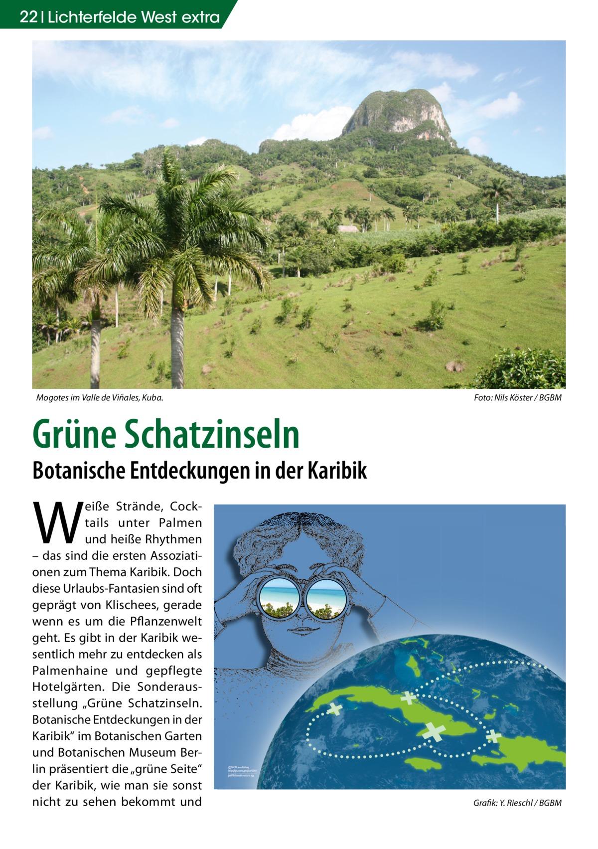 """22 Lichterfelde West extra  Mogotes im Valle de Viñales, Kuba.  Foto: Nils Köster / BGBM  Grüne Schatzinseln  Botanische Entdeckungen in der Karibik  W  eiße Strände, Cocktails unter Palmen und heiße Rhythmen – das sind die ersten Assoziationen zum Thema Karibik. Doch diese Urlaubs-Fantasien sind oft geprägt von Klischees, gerade wenn es um die Pflanzenwelt geht. Es gibt in der Karibik wesentlich mehr zu entdecken als Palmenhaine und gepflegte Hotelgärten. Die Sonderausstellung """"Grüne Schatzinseln. Botanische Entdeckungen in der Karibik"""" im Botanischen Garten und Botanischen Museum Berlin präsentiert die """"grüne Seite"""" der Karibik, wie man sie sonst nicht zu sehen bekommt und  Grafik: Y. Rieschl / BGBM"""