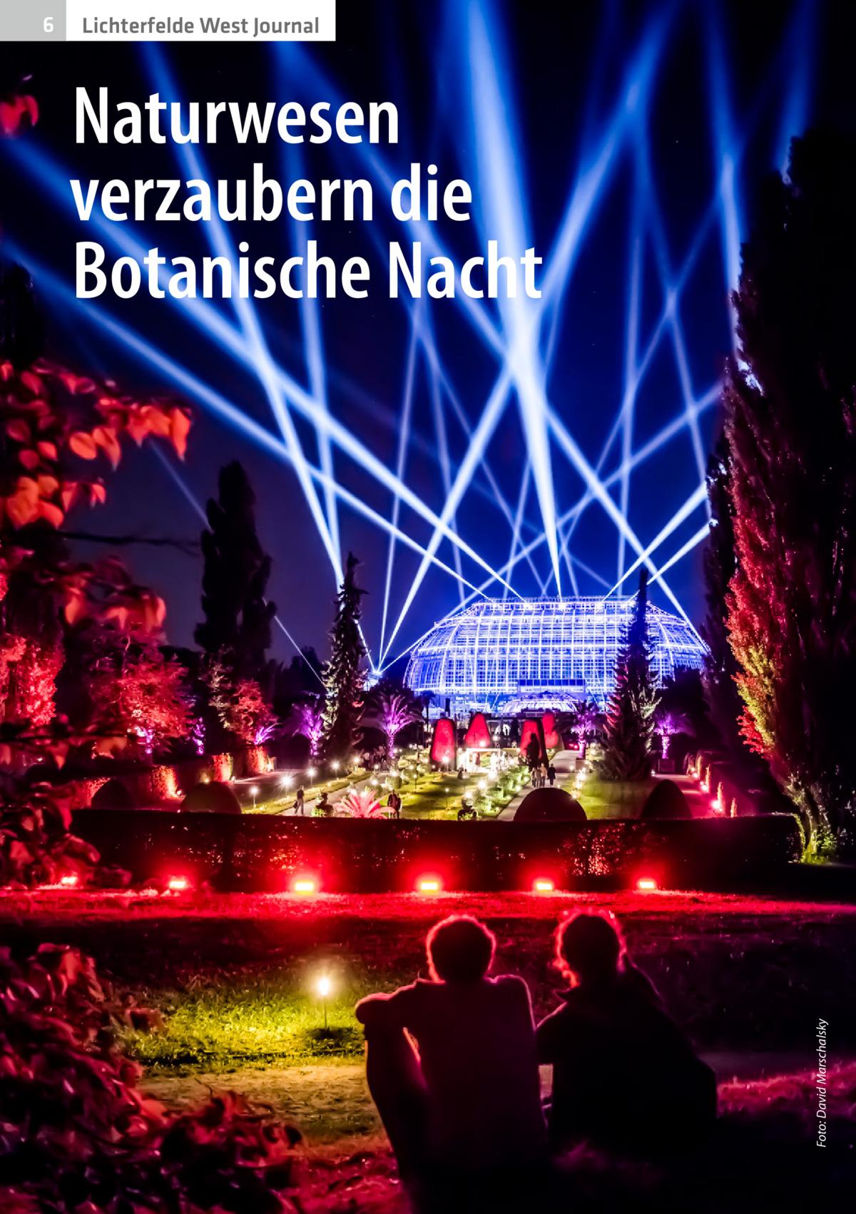 Lichterfelde West Journal  Naturwesen verzaubern die Botanische Nacht  Foto: David Marschalsky  6