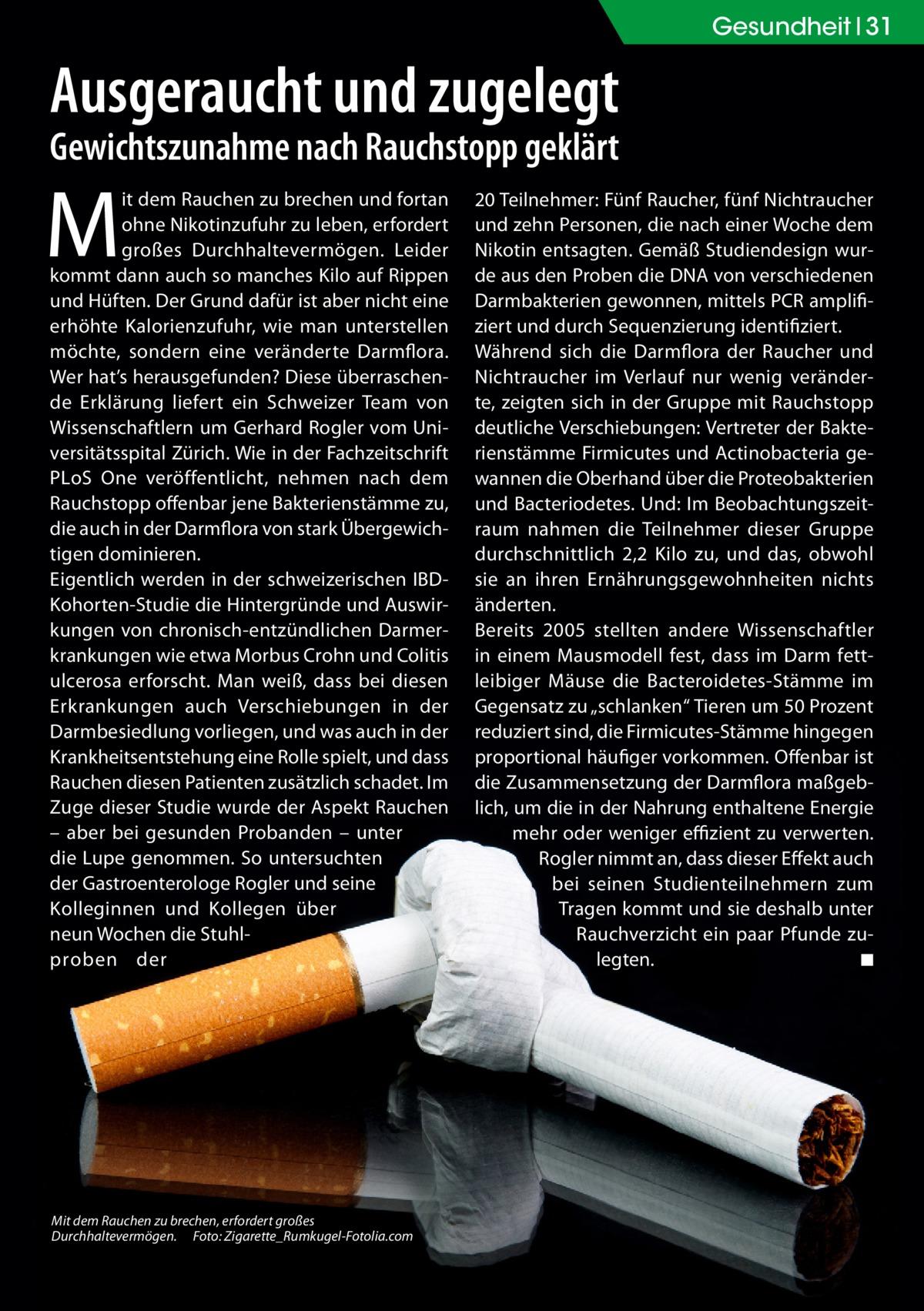 Gesundheit 31  Ausgeraucht und zugelegt Gewichtszunahme nach Rauchstopp geklärt  M  it dem Rauchen zu brechen und fortan ohne Nikotinzufuhr zu leben, erfordert großes Durchhaltevermögen. Leider kommt dann auch so manches Kilo auf Rippen und Hüften. Der Grund dafür ist aber nicht eine erhöhte Kalorienzufuhr, wie man unterstellen möchte, sondern eine veränderte Darmflora. Wer hat's herausgefunden? Diese überraschende Erklärung liefert ein Schweizer Team von Wissenschaftlern um Gerhard Rogler vom Universitätsspital Zürich. Wie in der Fachzeitschrift PLoS One veröffentlicht, nehmen nach dem Rauchstopp offenbar jene Bakterienstämme zu, die auch in der Darmflora von stark Übergewichtigen dominieren. Eigentlich werden in der schweizerischen IBDKohorten-Studie die Hintergründe und Auswirkungen von chronisch-entzündlichen Darmerkrankungen wie etwa Morbus Crohn und Colitis ulcerosa erforscht. Man weiß, dass bei diesen Erkrankungen auch Verschiebungen in der Darmbesiedlung vorliegen, und was auch in der Krankheitsentstehung eine Rolle spielt, und dass Rauchen diesen Patienten zusätzlich schadet. Im Zuge dieser Studie wurde der Aspekt Rauchen – aber bei gesunden Probanden – unter die Lupe genommen. So untersuchten der Gastroenterologe Rogler und seine Kolleginnen und Kollegen über neun Wochen die Stuhlproben der  Mit dem Rauchen zu brechen, erfordert großes Durchhaltevermögen.� Foto: Zigarette_Rumkugel-Fotolia.com  20Teilnehmer: Fünf Raucher, fünf Nichtraucher und zehn Personen, die nach einer Woche dem Nikotin entsagten. Gemäß Studiendesign wurde aus den Proben die DNA von verschiedenen Darmbakterien gewonnen, mittels PCR amplifiziert und durch Sequenzierung identifiziert. Während sich die Darmflora der Raucher und Nichtraucher im Verlauf nur wenig veränderte, zeigten sich in der Gruppe mit Rauchstopp deutliche Verschiebungen: Vertreter der Bakterienstämme Firmicutes und Actinobacteria gewannen die Oberhand über die Proteobakterien und Bacteriodetes. Und: Im Beobachtungszeitra