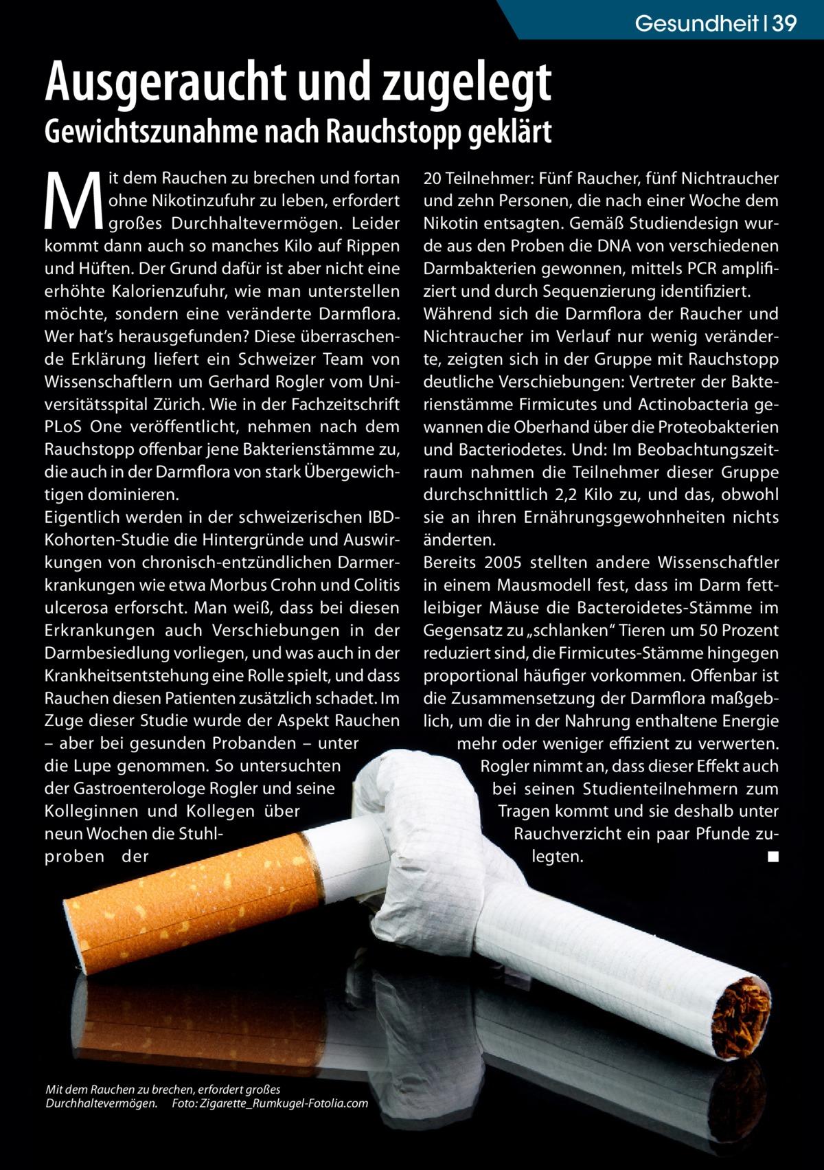 Gesundheit 39  Ausgeraucht und zugelegt Gewichtszunahme nach Rauchstopp geklärt  M  it dem Rauchen zu brechen und fortan ohne Nikotinzufuhr zu leben, erfordert großes Durchhaltevermögen. Leider kommt dann auch so manches Kilo auf Rippen und Hüften. Der Grund dafür ist aber nicht eine erhöhte Kalorienzufuhr, wie man unterstellen möchte, sondern eine veränderte Darmflora. Wer hat's herausgefunden? Diese überraschende Erklärung liefert ein Schweizer Team von Wissenschaftlern um Gerhard Rogler vom Universitätsspital Zürich. Wie in der Fachzeitschrift PLoS One veröffentlicht, nehmen nach dem Rauchstopp offenbar jene Bakterienstämme zu, die auch in der Darmflora von stark Übergewichtigen dominieren. Eigentlich werden in der schweizerischen IBDKohorten-Studie die Hintergründe und Auswirkungen von chronisch-entzündlichen Darmerkrankungen wie etwa Morbus Crohn und Colitis ulcerosa erforscht. Man weiß, dass bei diesen Erkrankungen auch Verschiebungen in der Darmbesiedlung vorliegen, und was auch in der Krankheitsentstehung eine Rolle spielt, und dass Rauchen diesen Patienten zusätzlich schadet. Im Zuge dieser Studie wurde der Aspekt Rauchen – aber bei gesunden Probanden – unter die Lupe genommen. So untersuchten der Gastroenterologe Rogler und seine Kolleginnen und Kollegen über neun Wochen die Stuhlproben der  Mit dem Rauchen zu brechen, erfordert großes Durchhaltevermögen.� Foto: Zigarette_Rumkugel-Fotolia.com  20Teilnehmer: Fünf Raucher, fünf Nichtraucher und zehn Personen, die nach einer Woche dem Nikotin entsagten. Gemäß Studiendesign wurde aus den Proben die DNA von verschiedenen Darmbakterien gewonnen, mittels PCR amplifiziert und durch Sequenzierung identifiziert. Während sich die Darmflora der Raucher und Nichtraucher im Verlauf nur wenig veränderte, zeigten sich in der Gruppe mit Rauchstopp deutliche Verschiebungen: Vertreter der Bakterienstämme Firmicutes und Actinobacteria gewannen die Oberhand über die Proteobakterien und Bacteriodetes. Und: Im Beobachtungszeitra