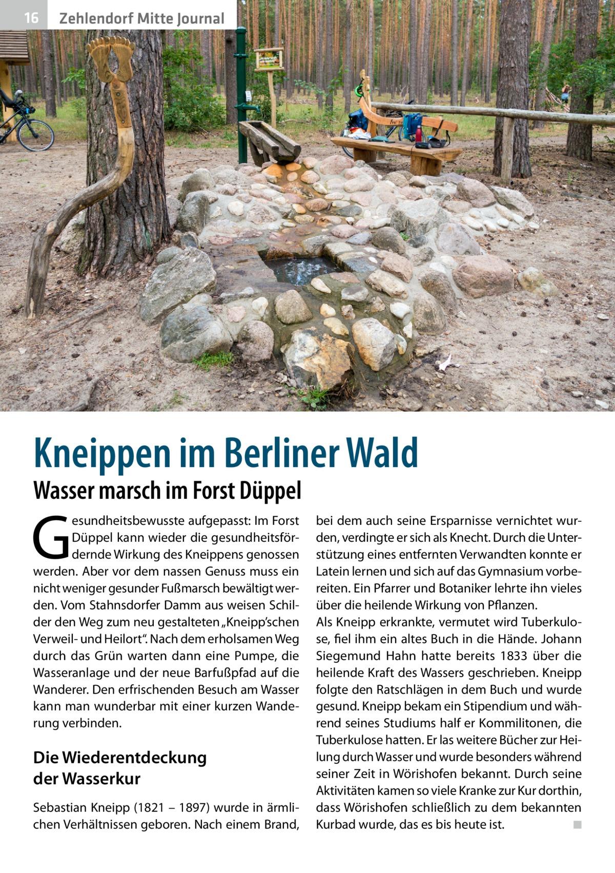 """16  Zehlendorf Mitte Journal  Kneippen im Berliner Wald Wasser marsch im Forst Düppel  G  esundheitsbewusste aufgepasst: Im Forst Düppel kann wieder die gesundheitsfördernde Wirkung des Kneippens genossen werden. Aber vor dem nassen Genuss muss ein nicht weniger gesunder Fußmarsch bewältigt werden. Vom Stahnsdorfer Damm aus weisen Schilder den Weg zum neu gestalteten """"Kneipp'schen Verweil- und Heilort"""". Nach dem erholsamen Weg durch das Grün warten dann eine Pumpe, die Wasseranlage und der neue Barfußpfad auf die Wanderer. Den erfrischenden Besuch am Wasser kann man wunderbar mit einer kurzen Wanderung verbinden.  Die Wiederentdeckung der Wasserkur Sebastian Kneipp (1821 – 1897) wurde in ärmlichen Verhältnissen geboren. Nach einem Brand,  bei dem auch seine Ersparnisse vernichtet wurden, verdingte er sich als Knecht. Durch die Unterstützung eines entfernten Verwandten konnte er Latein lernen und sich auf das Gymnasium vorbereiten. Ein Pfarrer und Botaniker lehrte ihn vieles über die heilende Wirkung von Pflanzen. Als Kneipp erkrankte, vermutet wird Tuberkulose, fiel ihm ein altes Buch in die Hände. Johann Siegemund Hahn hatte bereits 1833 über die heilende Kraft des Wassers geschrieben. Kneipp folgte den Ratschlägen in dem Buch und wurde gesund. Kneipp bekam ein Stipendium und während seines Studiums half er Kommilitonen, die Tuberkulose hatten. Er las weitere Bücher zur Heilung durch Wasser und wurde besonders während seiner Zeit in Wörishofen bekannt. Durch seine Aktivitäten kamen so viele Kranke zur Kur dorthin, dass Wörishofen schließlich zu dem bekannten Kurbad wurde, das es bis heute ist. � ◾"""